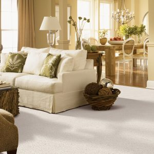 White carpet for living room | Signature Flooring, Inc