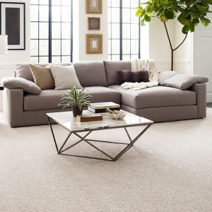 Comfortable carpet | Signature Flooring, Inc
