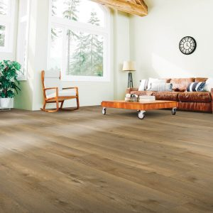 Laminate Flooring in Living Room | Signature Flooring, Inc